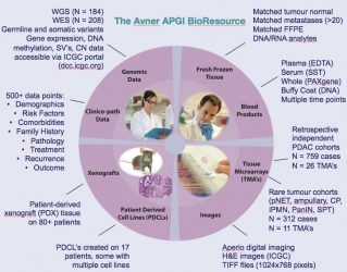 2016 Research Highlights from the APGI